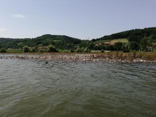 ciscenje jezera 2019 33