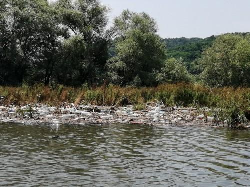 ciscenje jezera 2019 34